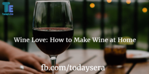 How to Make Wine at Home