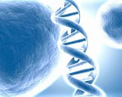Biotechnology Carrer