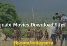 Best Free Pujnabi Movies Downloads Sites