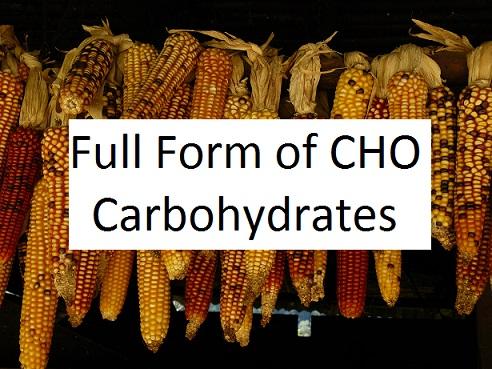 CHO Full Form